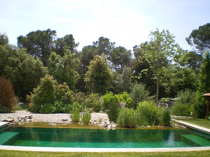 piscinas naturales, piscinas ecologicas | naturalizadas