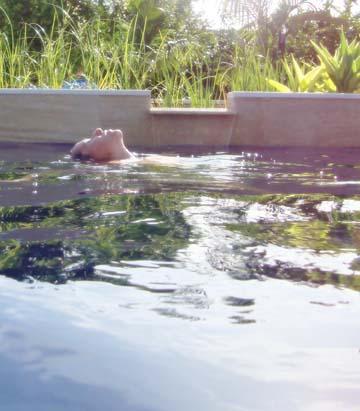 Piscinas naturalizadas piscinas naturales biopiscinas for Piscinas naturales pdf
