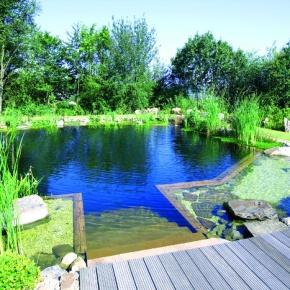 piscinas naturalizadas de uso pblico y sus controles - Piscinas Naturalizadas